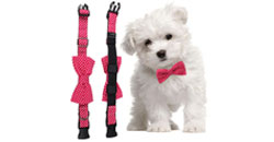 Xiuhe pet bow tie -- your pet's exclusive accessories